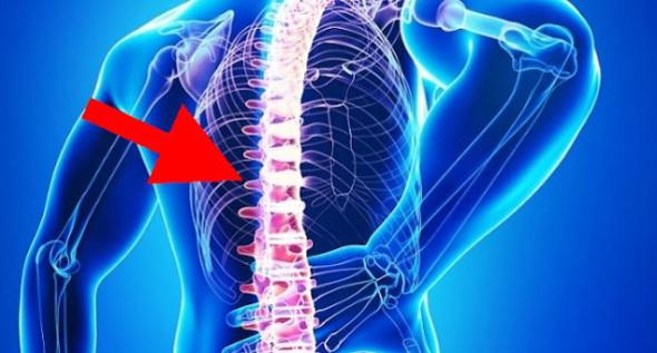 Harta durerilor de spate